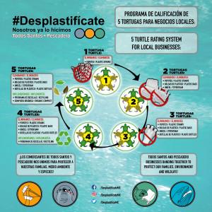 Desplastificate.5TurtleRatingsSocialMedia.2112x2112