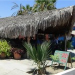 Mi Costa Restaurant in Todos Santos