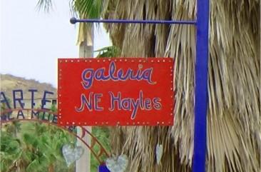 Galeria N.E. Hayles studio in Todos Santos