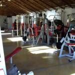 Aldo's Gym
